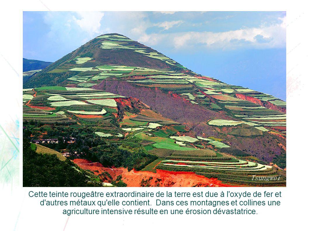 Cette teinte rougeâtre extraordinaire de la terre est due à l oxyde de fer et d autres métaux qu elle contient.