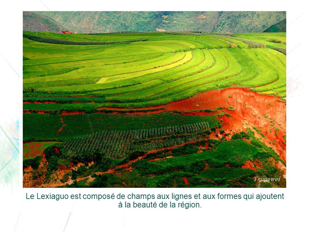 Le Lexiaguo est composé de champs aux lignes et aux formes qui ajoutent à la beauté de la région.