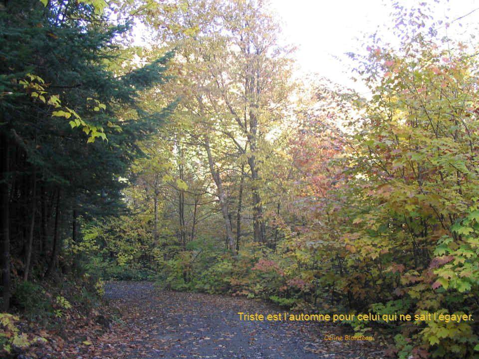 Triste est l'automne pour celui qui ne sait l'égayer.