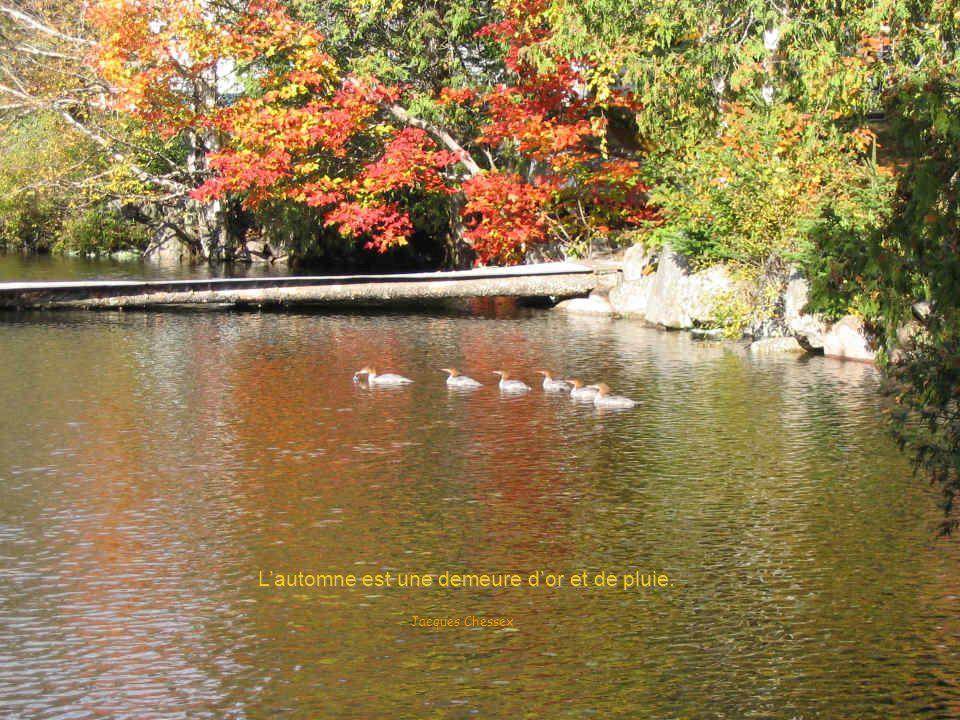 L'automne est une demeure d'or et de pluie.