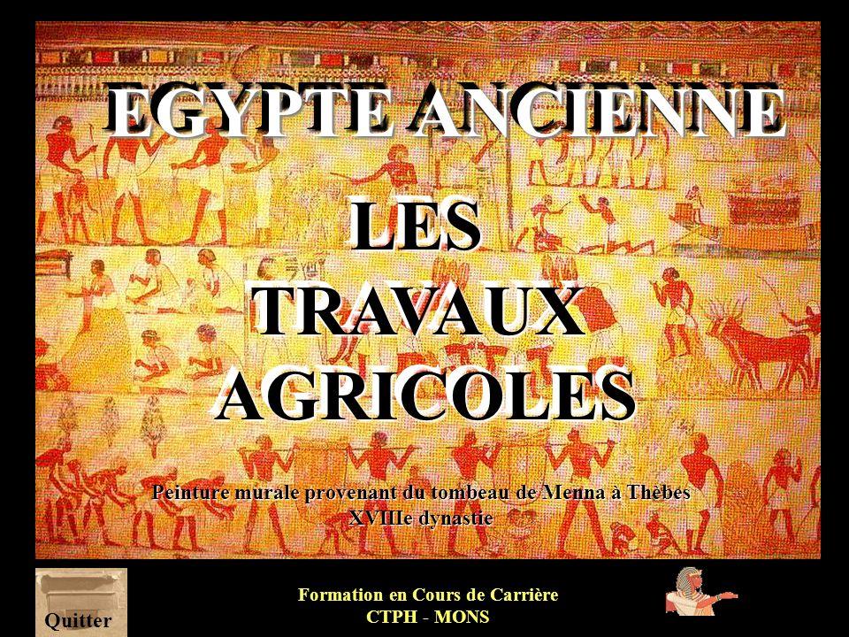 EGYPTE ANCIENNE LES TRAVAUX AGRICOLES
