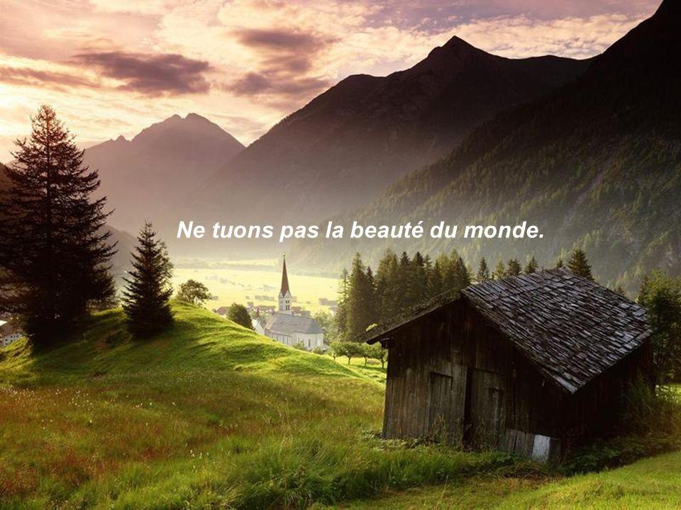 Ne tuons pas la beauté du monde.