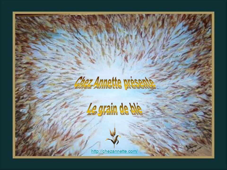 Chez Annette présente Le grain de blé http://chezannette.com/ 1