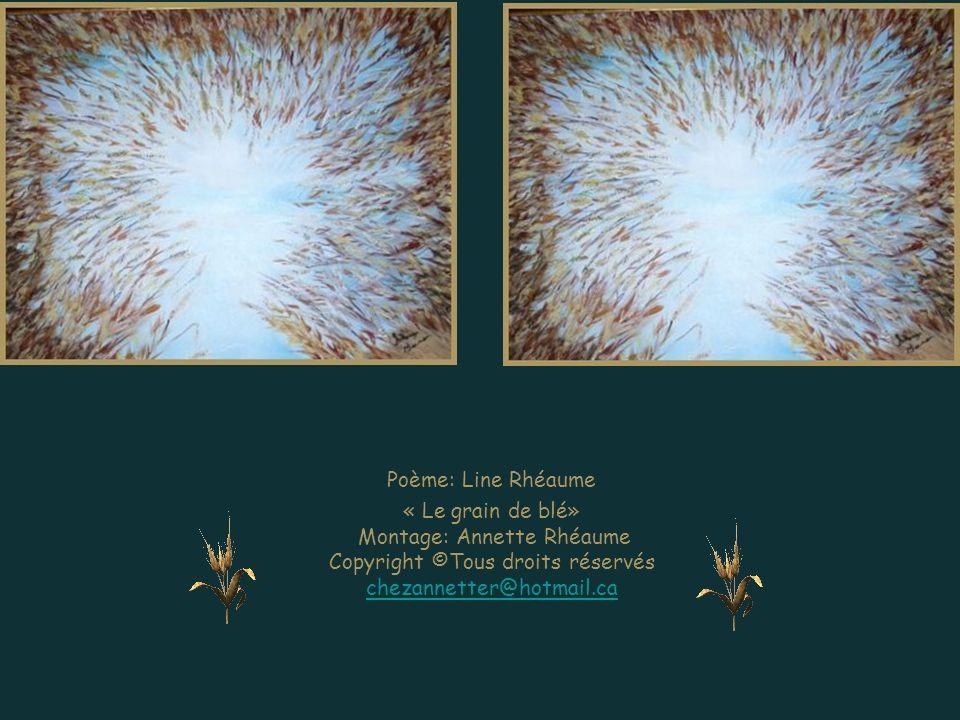 Poème: Line Rhéaume « Le grain de blé» Montage: Annette Rhéaume Copyright ©Tous droits réservés chezannetter@hotmail.ca.