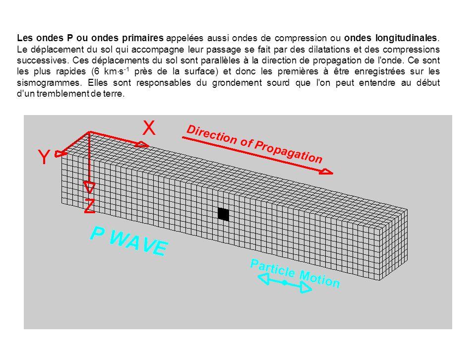Les ondes P ou ondes primaires appelées aussi ondes de compression ou ondes longitudinales.