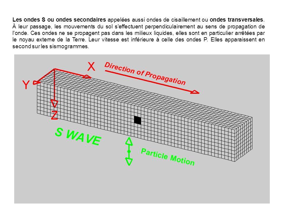 Les ondes S ou ondes secondaires appelées aussi ondes de cisaillement ou ondes transversales.