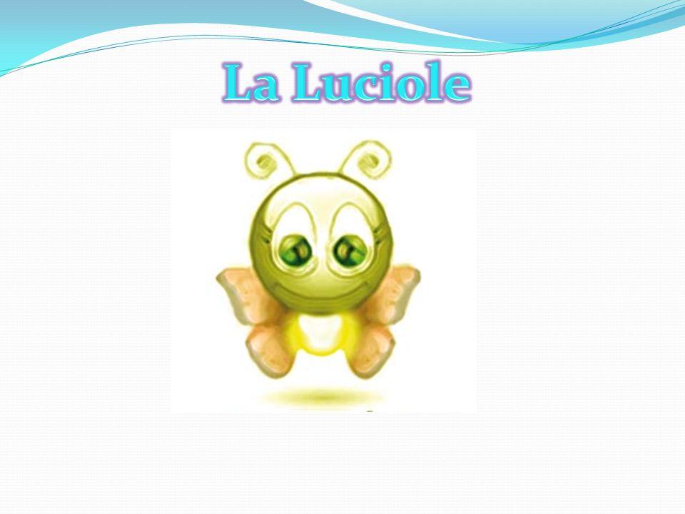 La Luciole