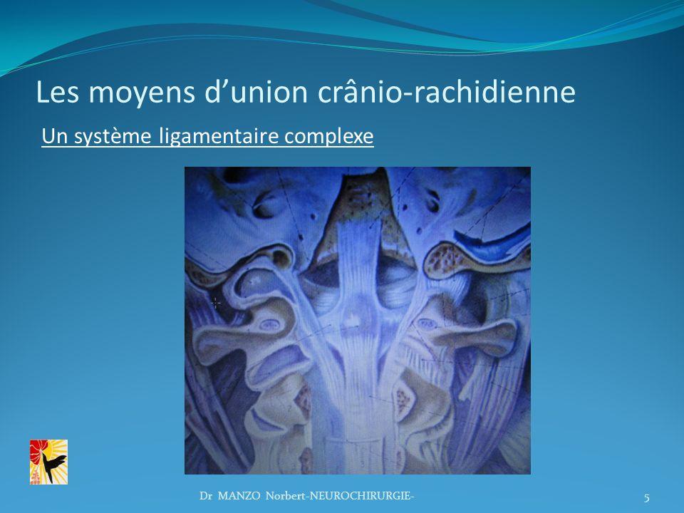 Les moyens d'union crânio-rachidienne