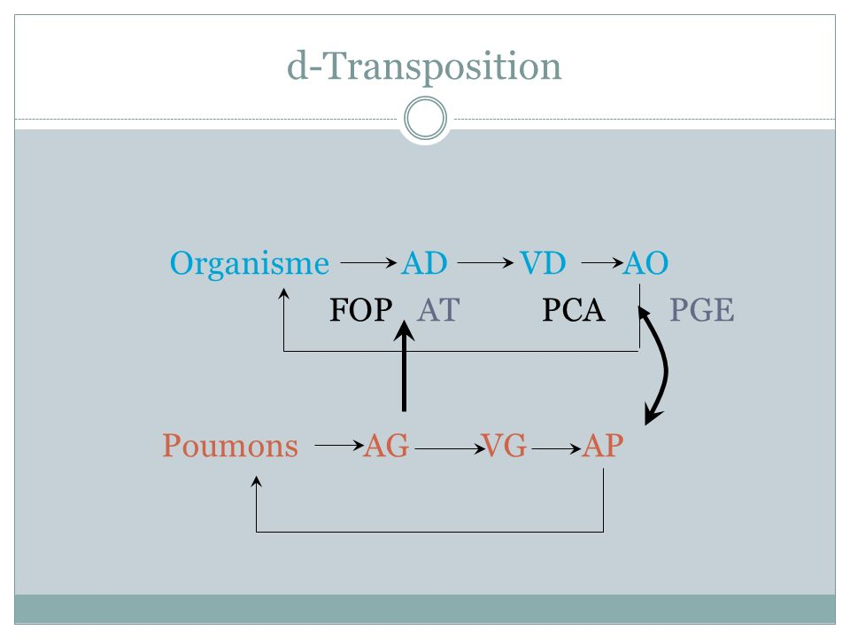 d-Transposition Organisme AD VD AO FOP AT PCA PGE Poumons AG VG AP