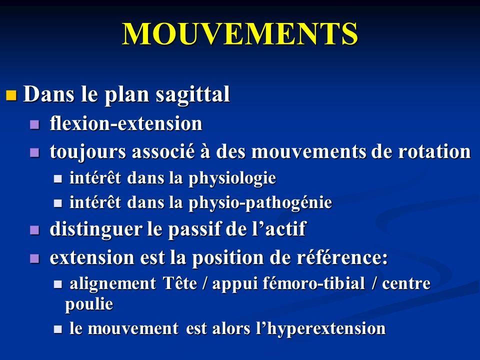 MOUVEMENTS Dans le plan sagittal flexion-extension
