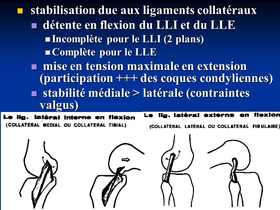 stabilisation due aux ligaments collatéraux