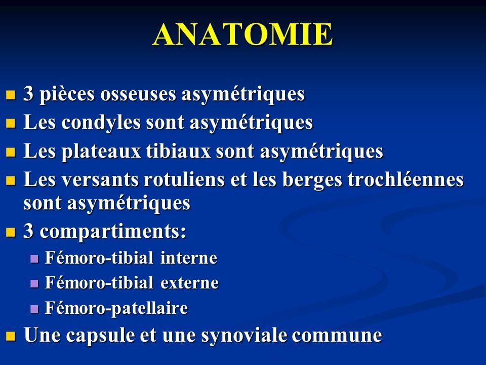 ANATOMIE 3 pièces osseuses asymétriques Les condyles sont asymétriques