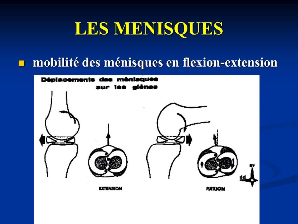 LES MENISQUES mobilité des ménisques en flexion-extension