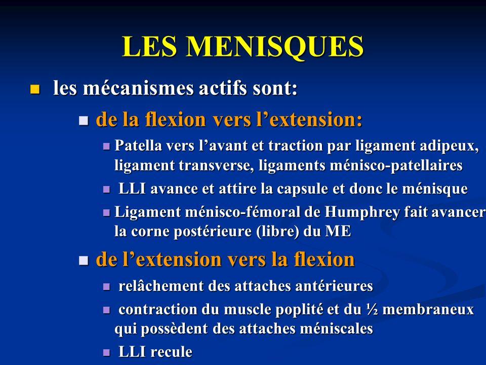 LES MENISQUES les mécanismes actifs sont: