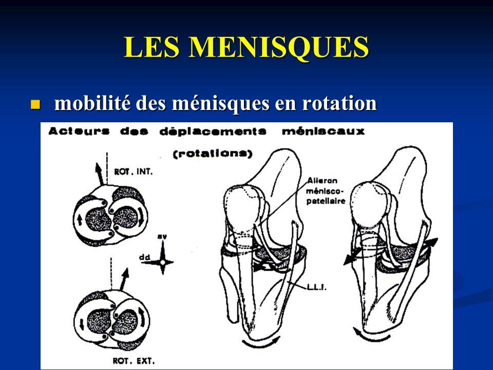 LES MENISQUES mobilité des ménisques en rotation