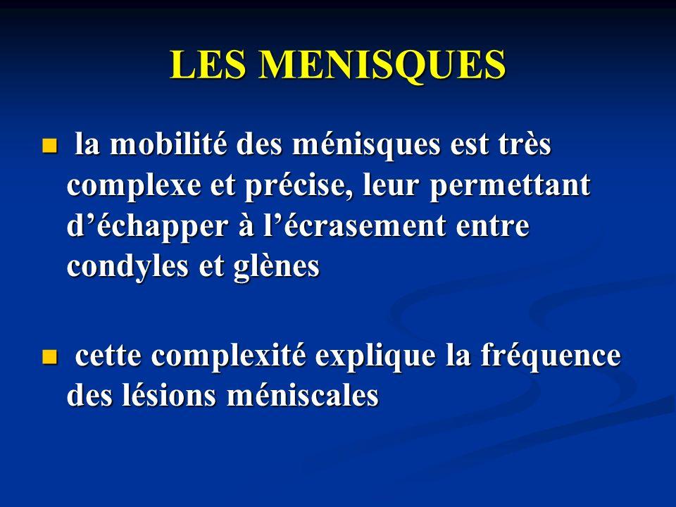 LES MENISQUES la mobilité des ménisques est très complexe et précise, leur permettant d'échapper à l'écrasement entre condyles et glènes.
