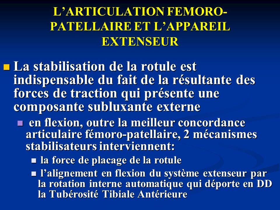 L'ARTICULATION FEMORO-PATELLAIRE ET L'APPAREIL EXTENSEUR
