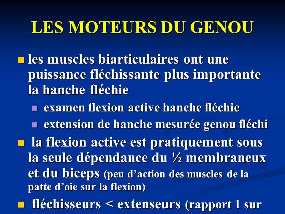 LES MOTEURS DU GENOU les muscles biarticulaires ont une puissance fléchissante plus importante la hanche fléchie.