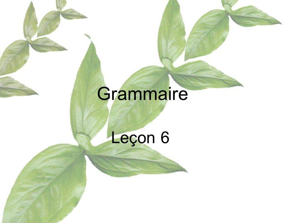Grammaire Leçon 6