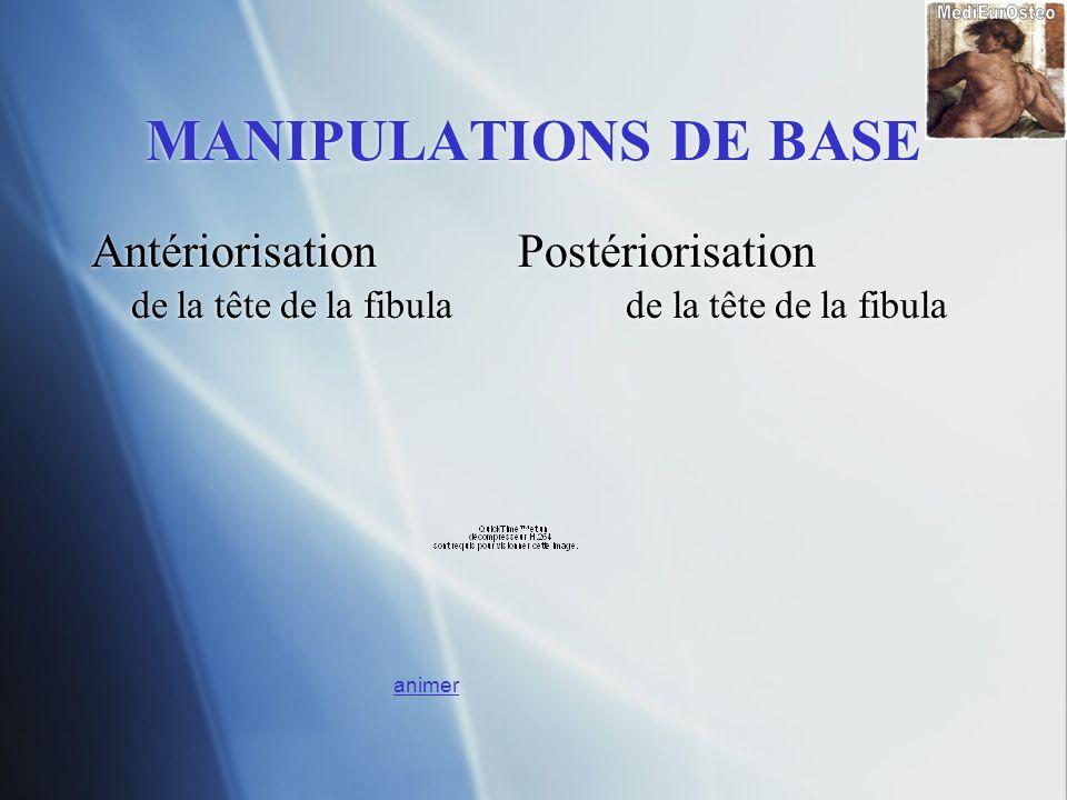 MANIPULATIONS DE BASE Antériorisation Postériorisation