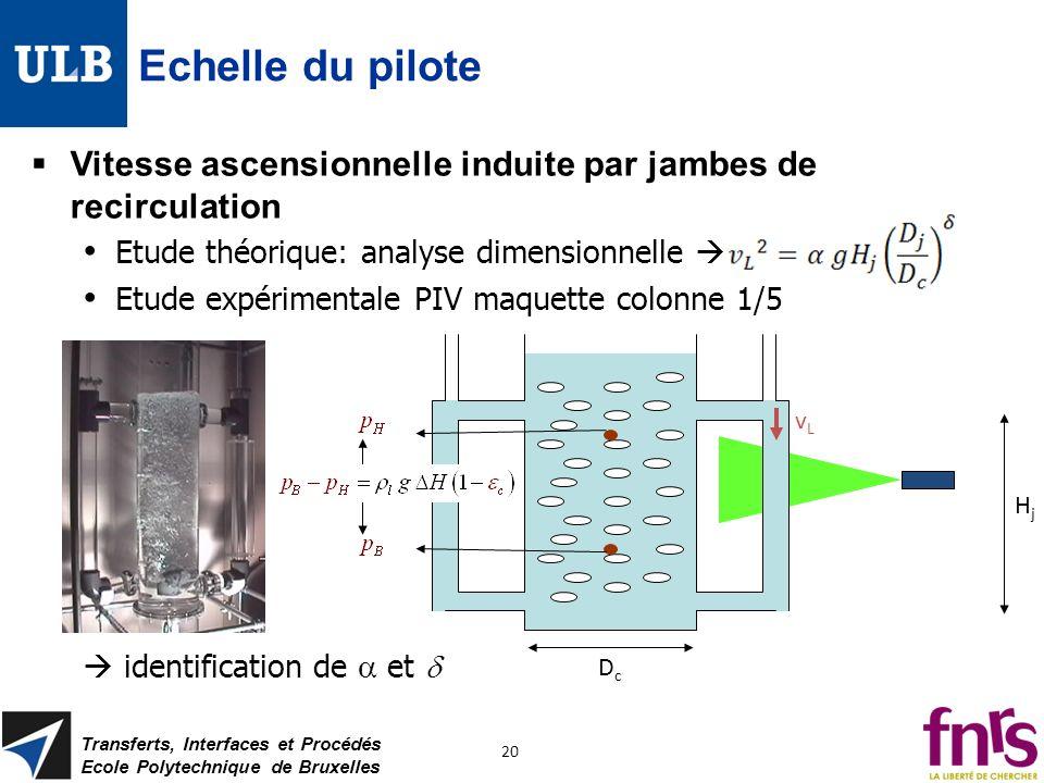 Echelle du pilote Vitesse ascensionnelle induite par jambes de recirculation. Etude théorique: analyse dimensionnelle 