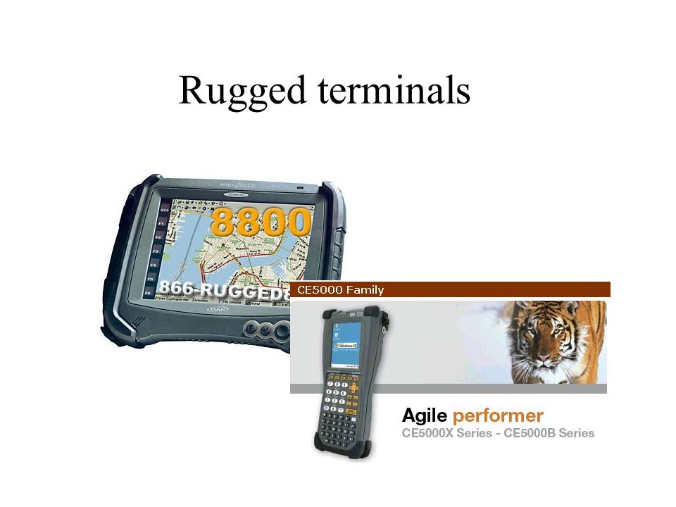 Rugged terminals