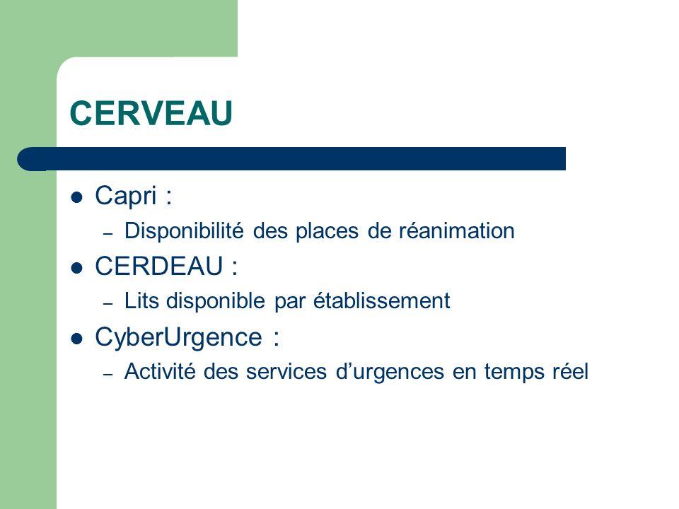 CERVEAU Capri : CERDEAU : CyberUrgence :