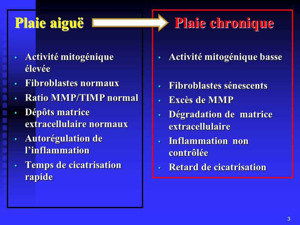 Plaie aiguë Plaie chronique Activité mitogénique élevée