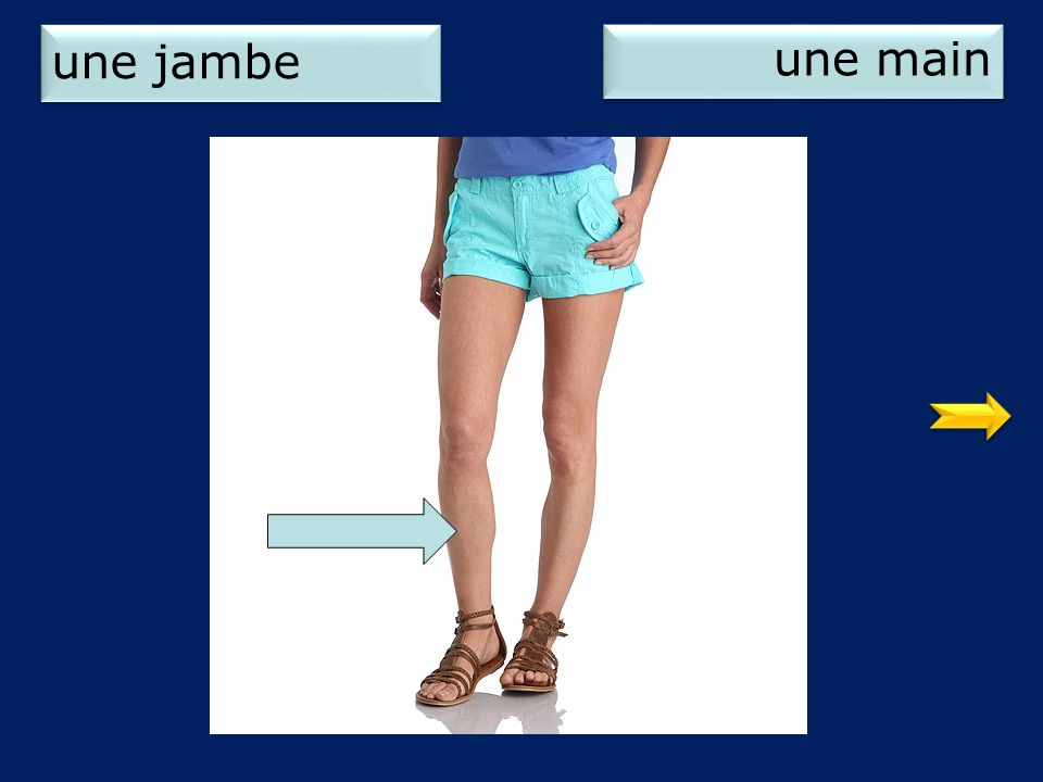 une jambe une main 1
