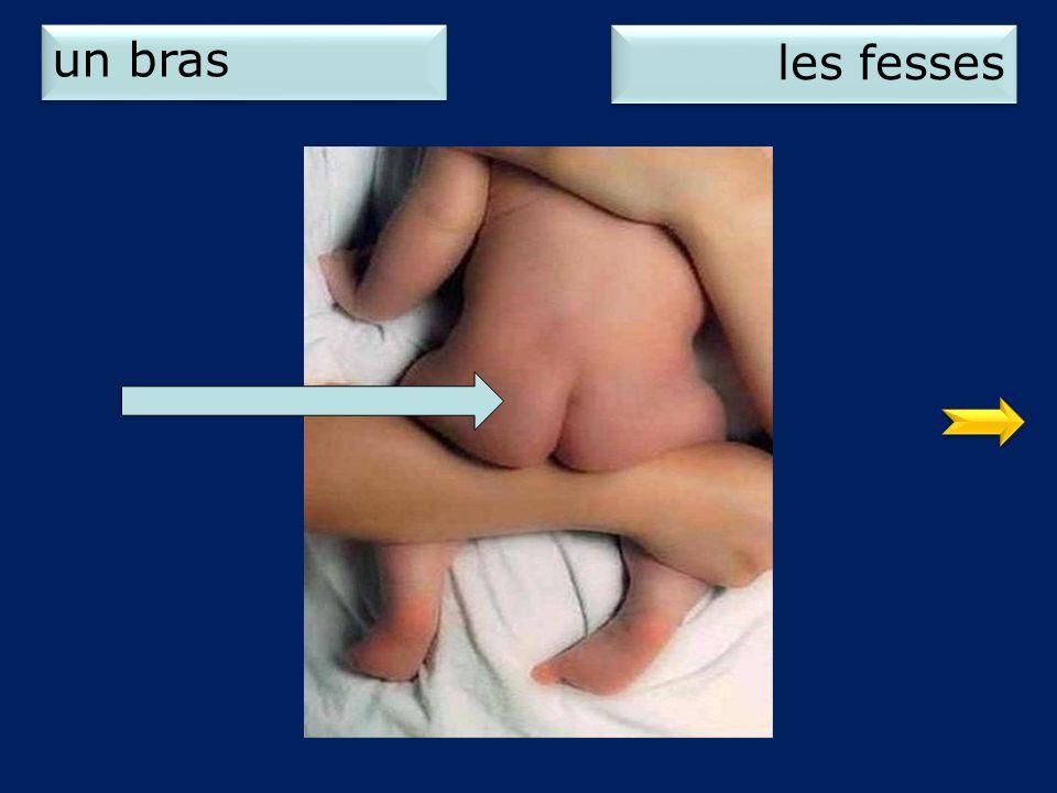un bras les fesses 2