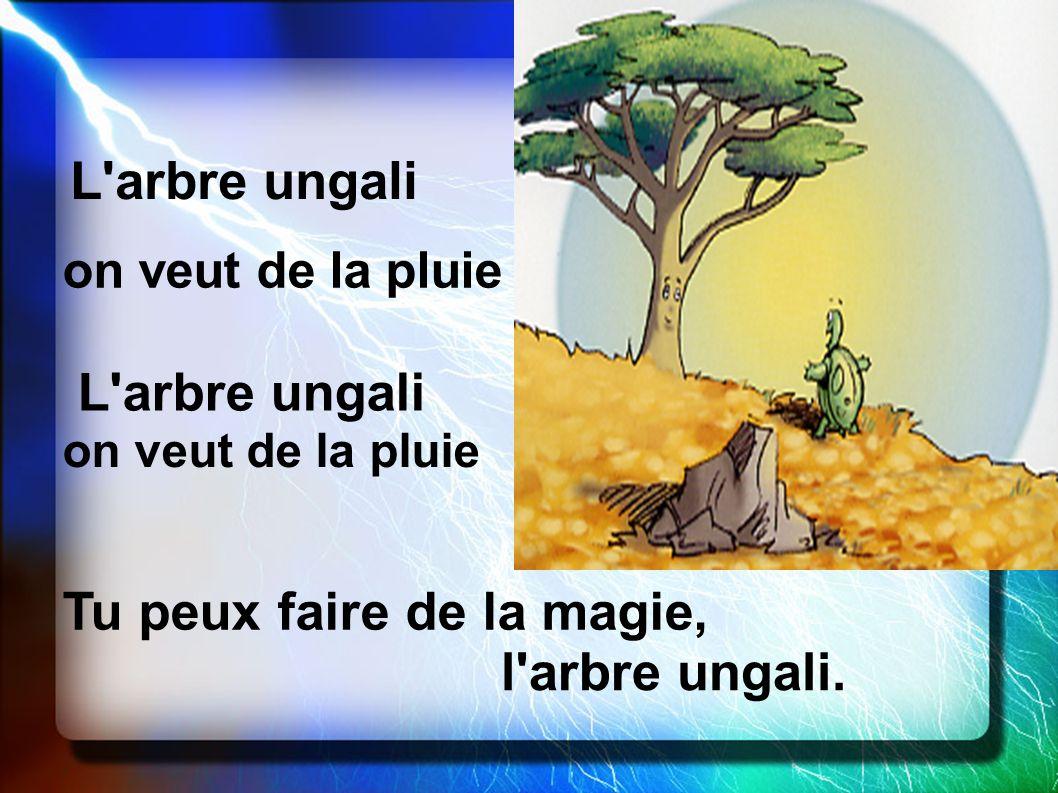 Tu peux faire de la magie, l arbre ungali.