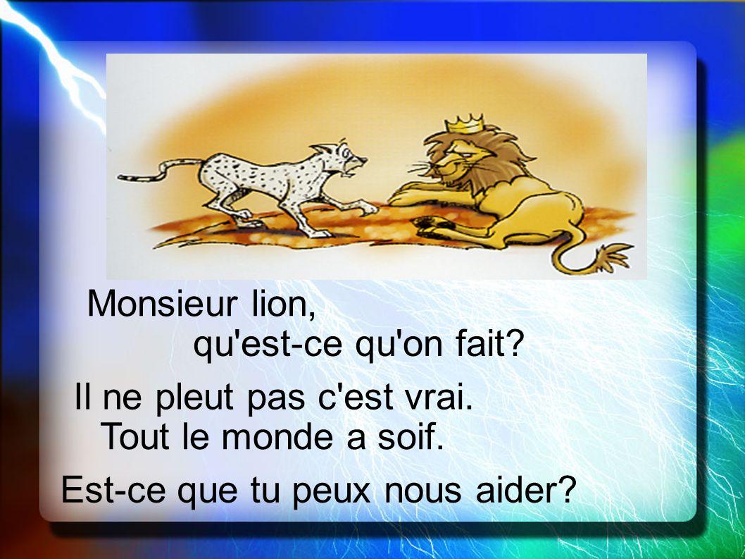 Monsieur lion, qu est-ce qu on fait. Il ne pleut pas c est vrai.
