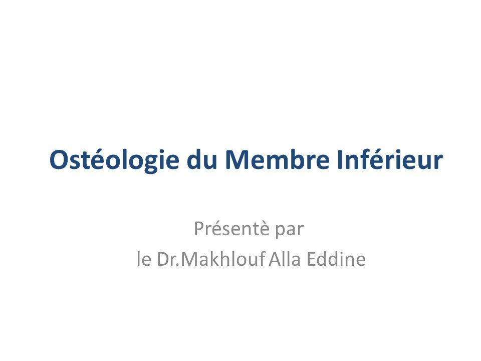 le Dr.Makhlouf Alla Eddine