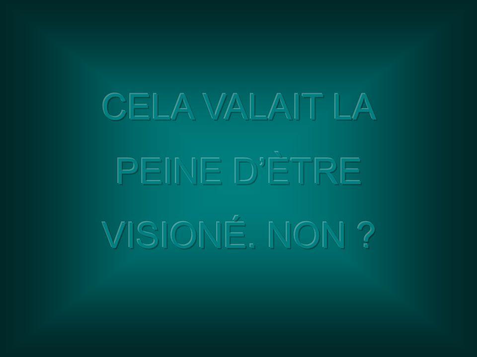 CELA VALAIT LA PEINE D'ÈTRE VISIONÉ. NON