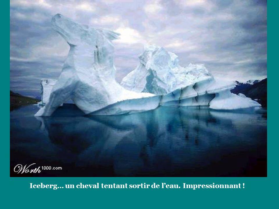 Iceberg… un cheval tentant sortir de l'eau. Impressionnant !