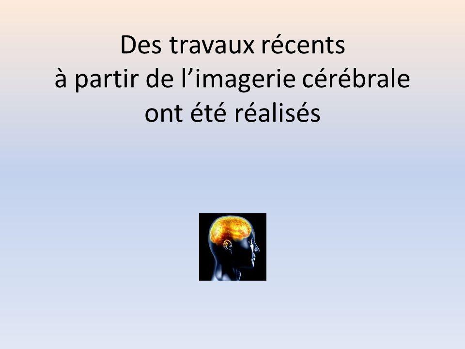 Des travaux récents à partir de l'imagerie cérébrale ont été réalisés