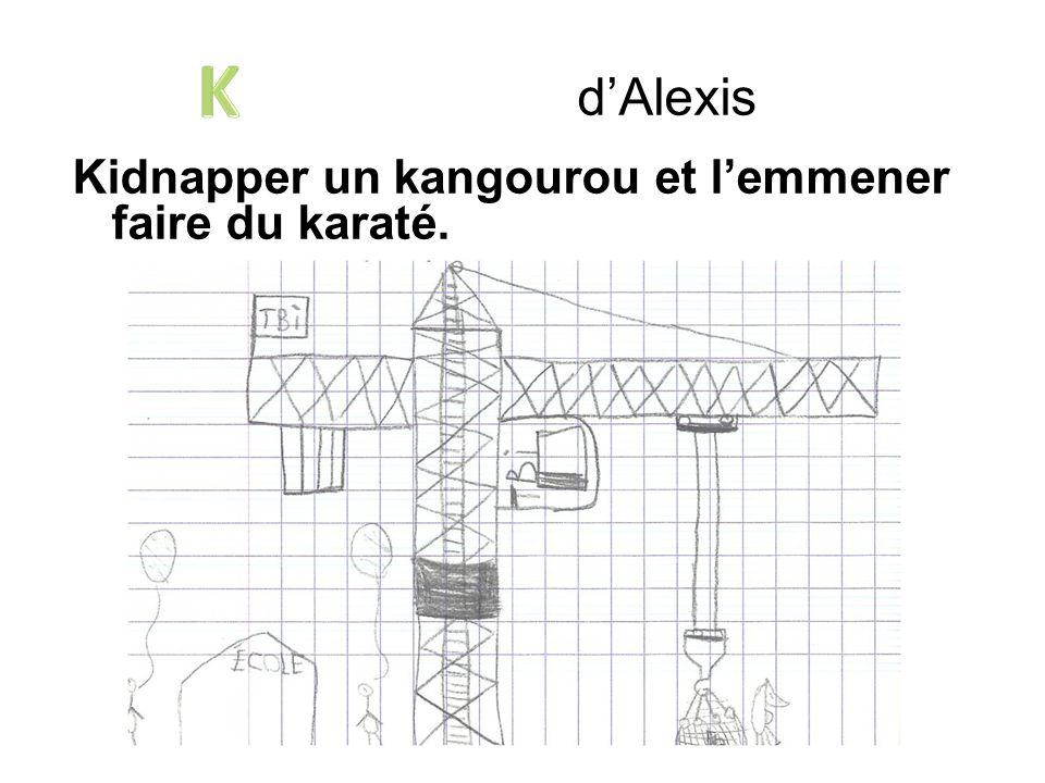 d'Alexis K Kidnapper un kangourou et l'emmener faire du karaté.