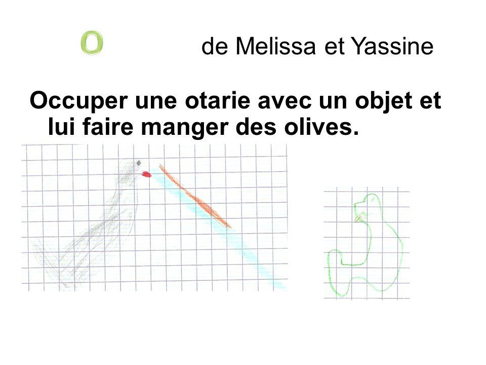 O de Melissa et Yassine Occuper une otarie avec un objet et lui faire manger des olives.