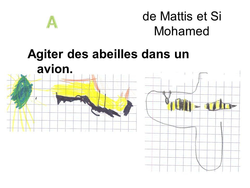 A de Mattis et Si Mohamed Agiter des abeilles dans un avion.