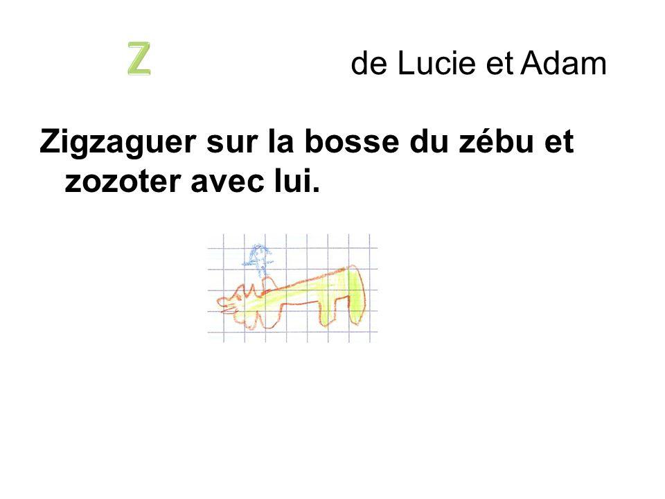 Z de Lucie et Adam Zigzaguer sur la bosse du zébu et zozoter avec lui.