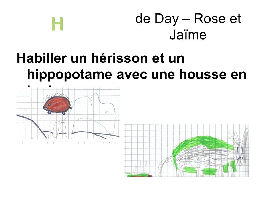de Day – Rose et Jaïme H Habiller un hérisson et un hippopotame avec une housse en herbe.