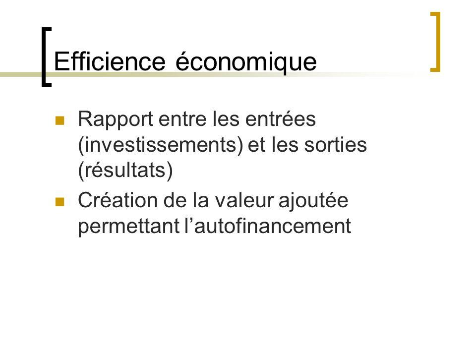 Efficience économique