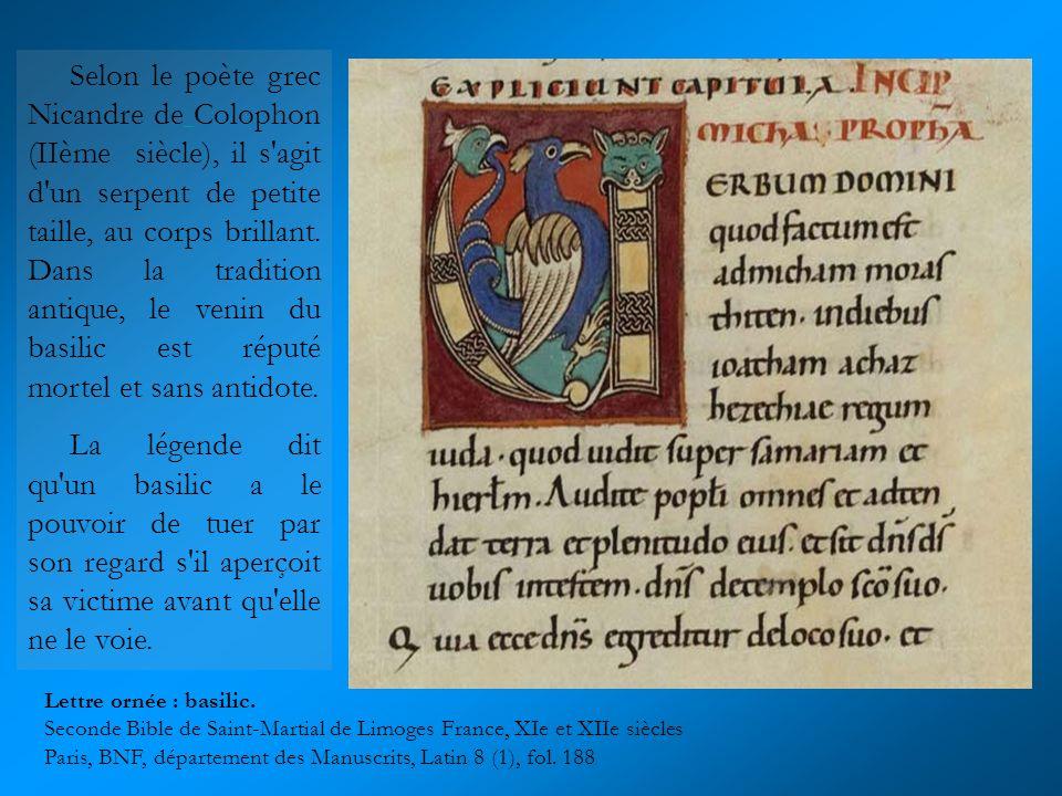 Selon le poète grec Nicandre de Colophon (IIème siècle), il s agit d un serpent de petite taille, au corps brillant. Dans la tradition antique, le venin du basilic est réputé mortel et sans antidote.