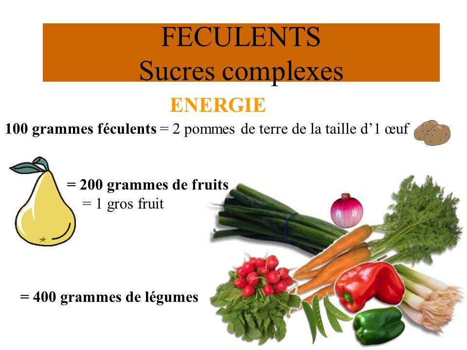 FECULENTS Sucres complexes ENERGIE