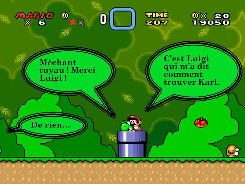 Le chemin du travail Mario et Yoshi entre dans un tunnel