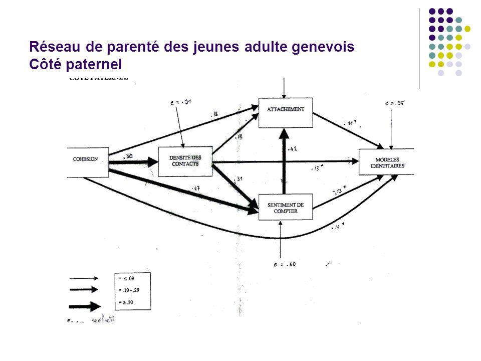 Réseau de parenté des jeunes adulte genevois Côté paternel