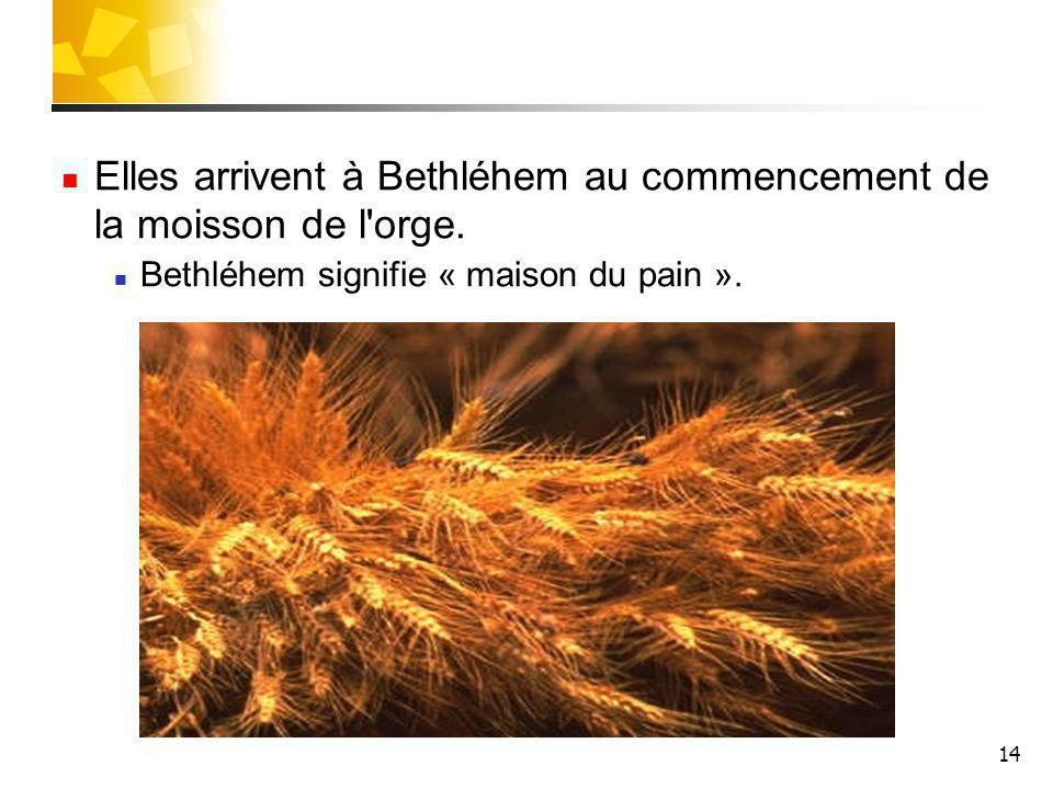 Elles arrivent à Bethléhem au commencement de la moisson de l orge.