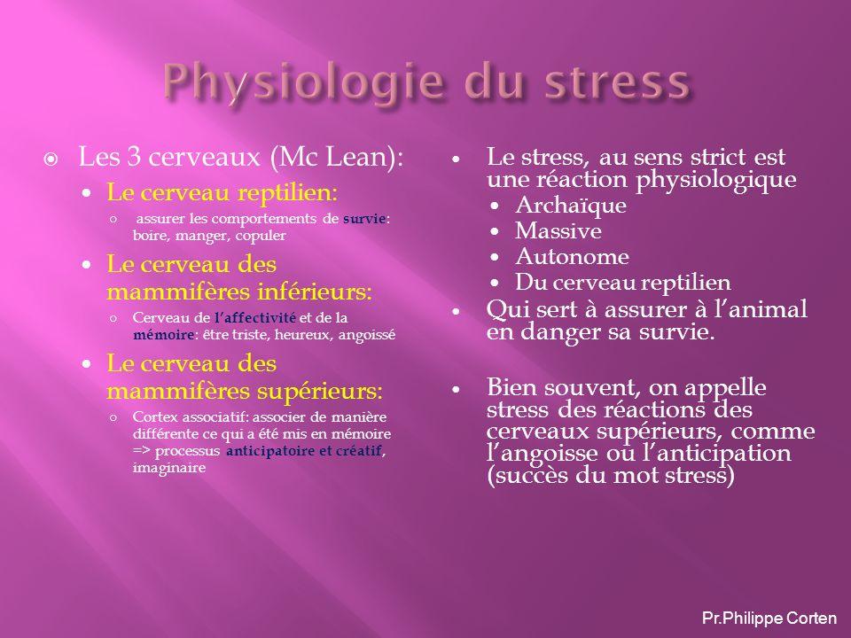 Physiologie du stress Les 3 cerveaux (Mc Lean):