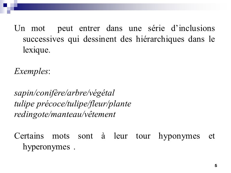 sapin/conifère/arbre/végétal tulipe précoce/tulipe/fleur/plante