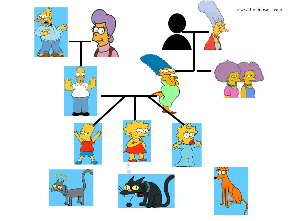 www.thesimpsons.com Abraham Mona Father Jackie Homer Marge